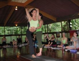 frog lotus yoga