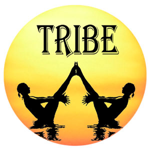 tribe yoga teacher training