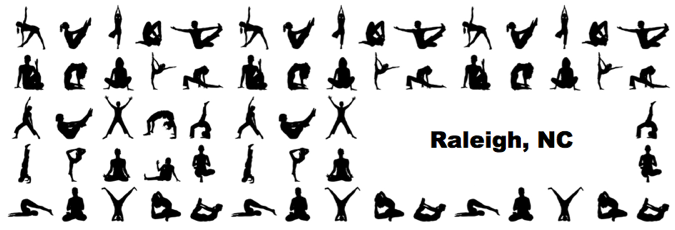 raleigh yoga teacher training certification